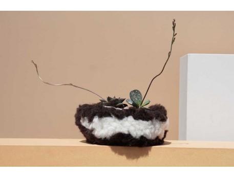 Cache-pot pour cactus et plantes Casa Cubista